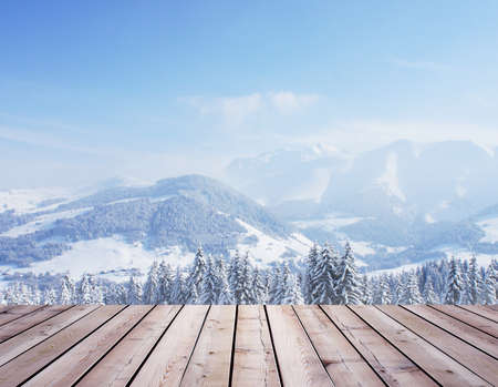 schneeberg: beautiful winter forest and roof
