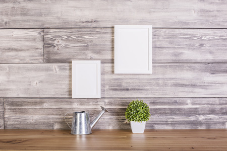 wateringcan: Blank picture frames, plant and watering-can on wooden background. Mock up