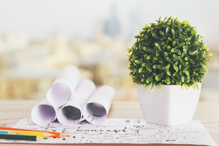rolled paper: Closeup of creative workpspace with small plant, rolled paper sheets and business concept sketch Stock Photo