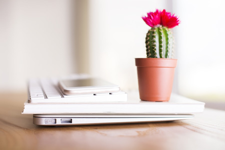Closeup of cactus with flower placed on laptop, notepad, keyboard and smartphone Фото со стока - 57349772