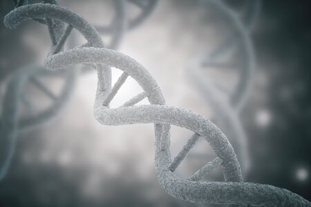 replication: DNA closeup on grey background. 3D Rendering Stock Photo