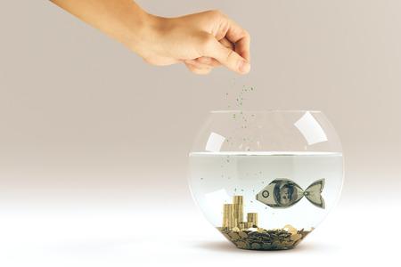 feed: hand feed dollar bill in form of a fish in aquarium