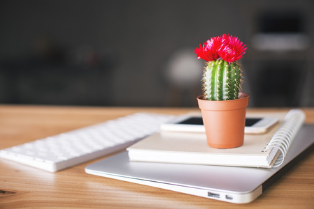 cacti: Closeup of wooden desktop with cactus placed on laptop, notepad, smartphone and keyboard