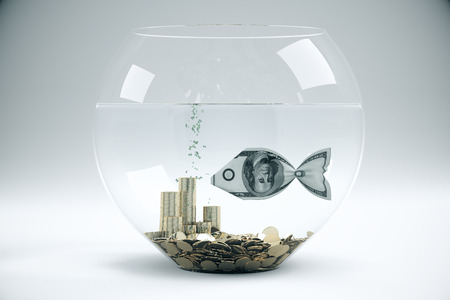 bowls: Fish bowl with dollar banknote fish and coins on light grey background. Financial concept. 3D Rendering Stock Photo