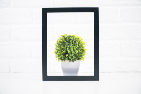 frame wall: Small decorative plant inside black picture frame on white brick wall background Stock Photo