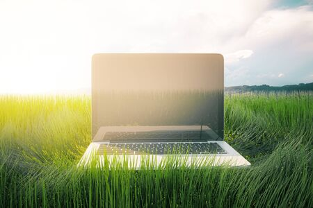 grass close up: Blank laptop computer placed on green grass. Sky background with sunlight. Close up, Mock up, 3D Rendering