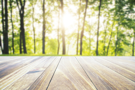 closeup: Empty wooden table on nature background. Mock up, 3D Rendering Stock Photo