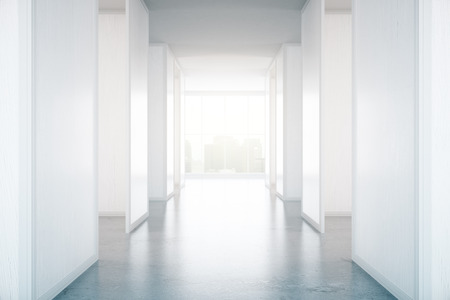 daylight: Concrete hall interior with daylight and city view. 3D Rendering