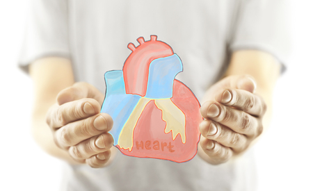heart health: Closeup of hands holding creative heart sketch. Health concept