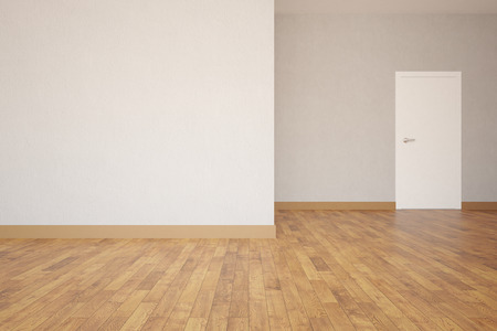 white door: Concrete interior with white door and empty wall. Mock up, 3D Rendering