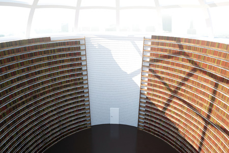 law library: Abstract interior with bookshelf walls and round ceiling. Knoweldge concept. 3D Rendering