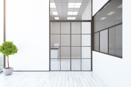 reception desk: Contemporary interior with reception desk behind framed glass door, decorative plant and city view. 3D Rendering
