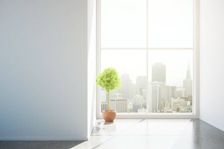 unfurnished: Front view of unfurnished concrete interior with blank wall, decorative plant and city view. Mock up, 3D Rendering Stock Photo