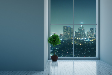 unfurnished: Front view of unfurnished concrete interior with blank wall, decorative plant and night city view. Mock up, 3D Rendering