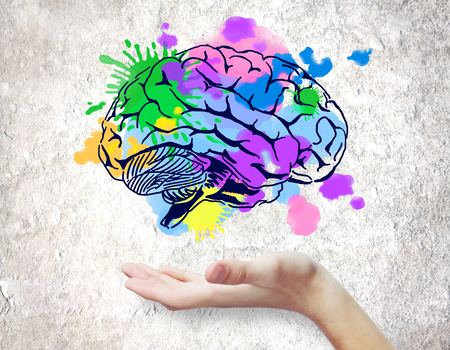 Hand holding colorful brain sketch on concrete background. Creative mind concept Stock Photo