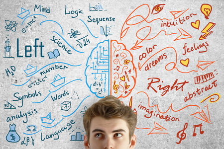 science education: Attractive young man on concrete background with brain sketch. Creative and analytical thinking concept