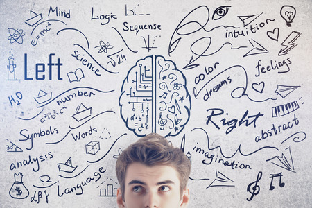 science education: Attractive young man on concrete background with creative sketch. Different brain sides concept