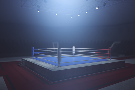 box: Side view of boxing ring in misty interior with spotight. Surrounded with ropes. 3D Rendering