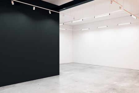 Contemporary gallery interior with copy space on wall. Mock up, 3D Rendering