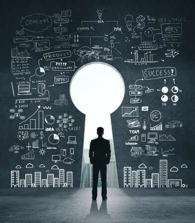 Businessman looking on drawing business sketch on concrete wall with door in form keyhole. Business and startup concept.