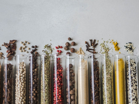 Various dry spices in glass tubes and spilled on gray background.