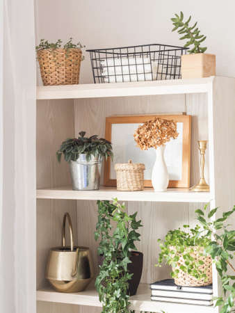 Houseplants and home decor on wooden shelves. Modern room decor. Front view. Stock fotó - 158611578