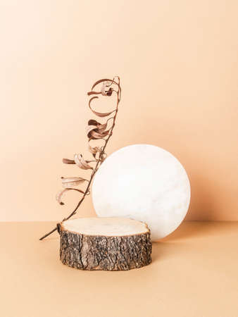 Creative trending composition with natural wood podium, round marble board and dry branch on pastel beige background. copy space. Front view? Podium for the presentation of various products