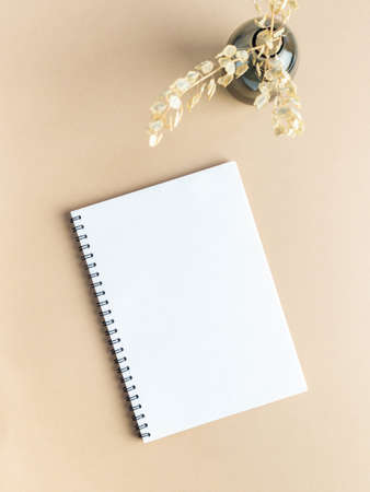 White blank notepad sheet with spiral and glass vase with dry plants on beige background