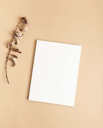 White magazine cover mockup and dry branch on beige background. top view. Copy space Stock fotó