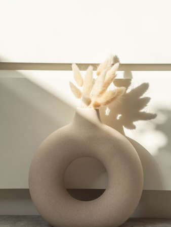 Round stylish ceramic vase with dried flower lagurus casting shadows on the wall. Front view. Copy space Stock fotó