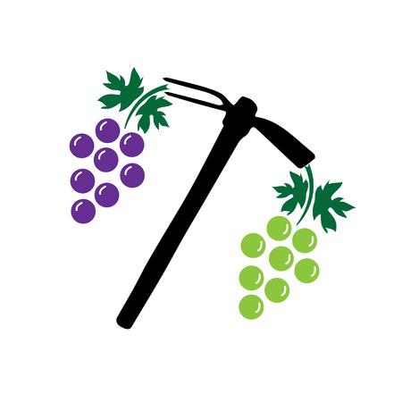 Grape harvest Illusztráció
