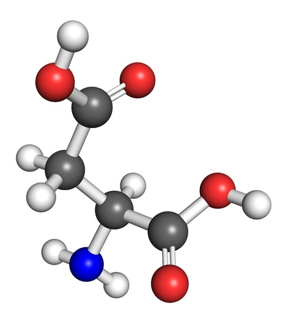 biosynthesis: Aspartate (amino acid) molecule, ball and stick model. Atoms colored according to convention.