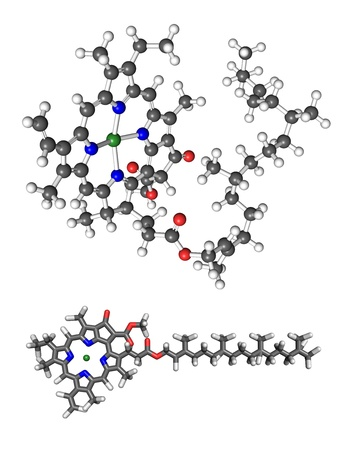 enzyme: Chlorophyll a molecule. 3D ball and stick model, with 2D stick representation added for clarity. Stock Photo