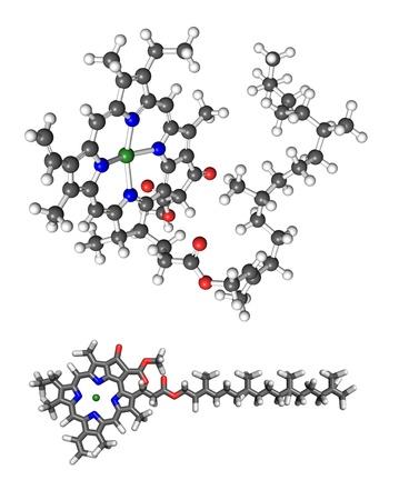 molecula de agua: La clorofila a molécula. Bola 3D y el modelo de palo, palo con una representación 2D añadido para mayor claridad. Foto de archivo