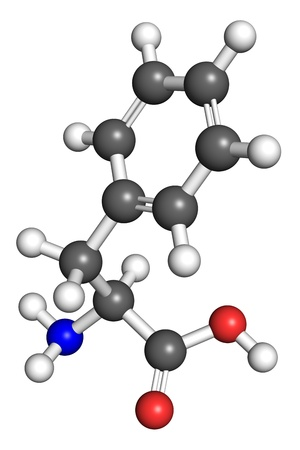 biosynthesis: Phenylalanine  amino acid  molecule, ball and stick model  Atoms colored according to convention