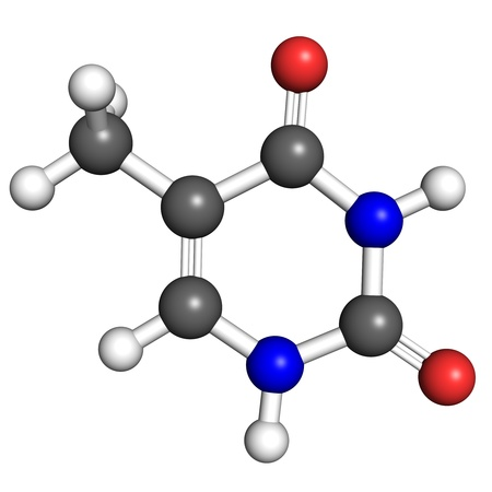 uracil: Thymine is a nucleobase found in DNA molecules  Ball and stick model, atoms coloured according to convention  Stock Photo