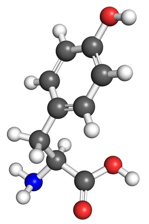 Thyrosine  amino acid  molecule, ball and stick model  Atoms colored according to convention  Stock Photo - 18728103
