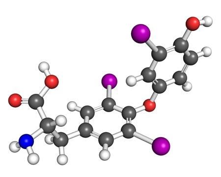 Triyodotironina (T3) molécula, bola y modelo de palo. T3 es una hormona tiroidea que afecta el crecimiento y el desarrollo, el metabolismo, la temperatura corporal y el ritmo cardíaco.