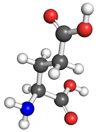 glutamate: Glutamate  amino acid  molecule, ball and stick model  Atoms colored according to convention