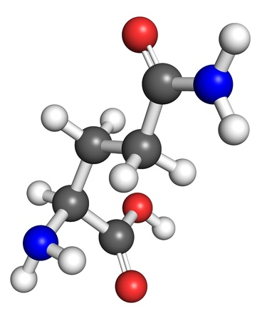 macromolecule: Glutamine  amino acid  molecule, ball and stick model  Atoms colored according to convention  Stock Photo