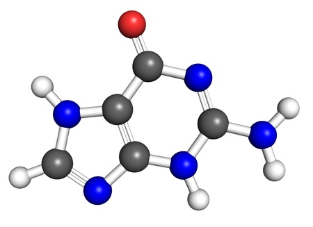 uracil: Guanine is a nucleobase found in DNA and RNA molecules  Ball and stick model, atoms coloured according to convention  Stock Photo