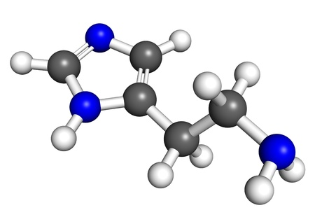 Histamine is a hormone that regulates immune response, gut function and acts as neurotransmitter  Ball and stick model, atoms are coloured according to convention  nitrogen-blue; carbon-gray; hydrogen-white Stock Photo - 18850228