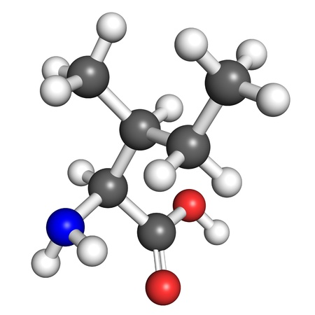 enzyme: Isoleucine  amino acid  molecule, ball and stick model  Atoms colored according to convention