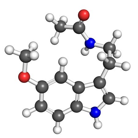 cancer research: Melatonin, a hormone that regulates daily biological cycle  Ball and stick model, atoms coloured according to convention  nitrogen-blue; carbon-gray; oxygen-red; hydrogen-white
