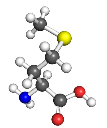 Methionine  amino acid  molecule, ball and stick model  Atoms colored according to convention Stock Photo - 18850259