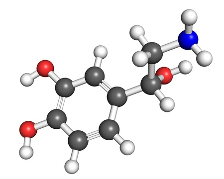 norepinephrine: Noradrenaline molecule, ball and stick model  Atoms are colored according to convention