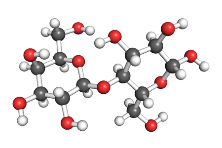 according: Ball and stick model of a lactose molecule. Atoms are coloured according to convention (hydrogen-white, oxygen-red, carbon-grey).