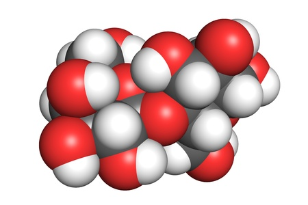 according: Space-filling model of a lactose molecule. Atoms are coloured according to convention (hydrogen-white, oxygen-red, carbon-grey).