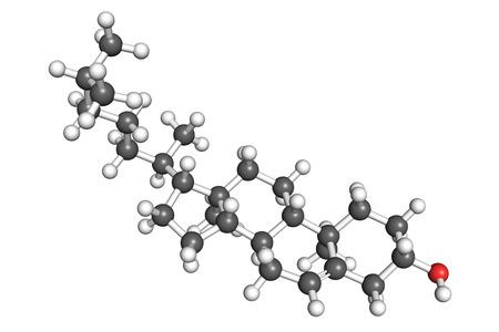 celula animal: El colesterol es un componente esencial estructural de las membranas celulares de animales y un precursor para la bios�ntesis de las hormonas esteroides, �cidos biliares y vitamina D. Modelo de bola y palo, esquema de colores convencional.