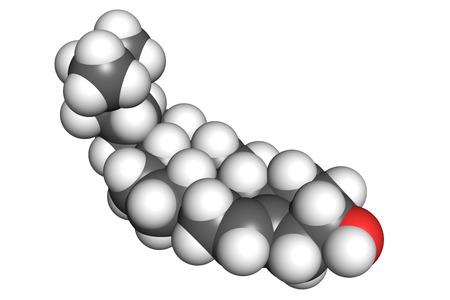 celula animal: El colesterol es un componente esencial estructural de las membranas celulares de los animales y un precursor para la bios�ntesis de las hormonas esteroides, �cidos biliares y el Modelo de compilaci�n de la vitamina D., colores convencionales. Foto de archivo